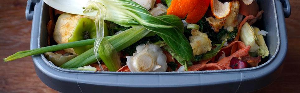 progetto-sort-ridurre-sprechi-alimentari(900x300px)