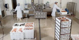 Sistemi di tracciabilità in produzione e trasformazione di carne